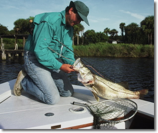 Fly casting to snook